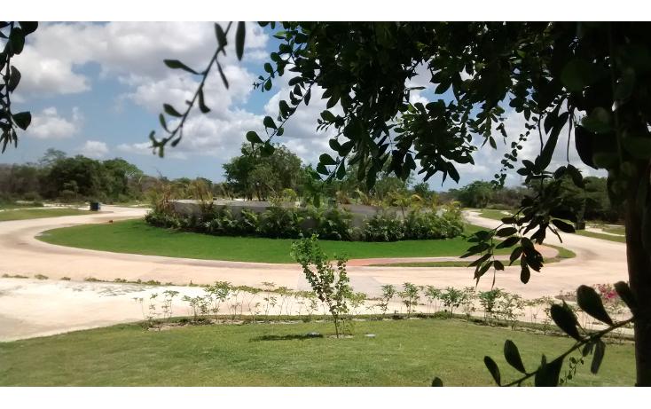 Foto de terreno habitacional en venta en  , cholul, mérida, yucatán, 1271257 No. 06