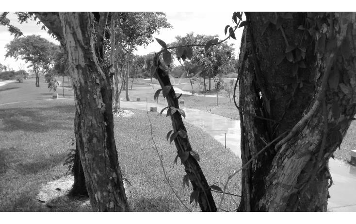 Foto de terreno habitacional en venta en  , cholul, mérida, yucatán, 1271257 No. 08