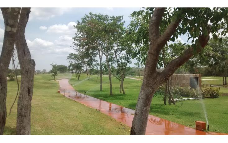 Foto de terreno habitacional en venta en  , cholul, mérida, yucatán, 1271257 No. 09