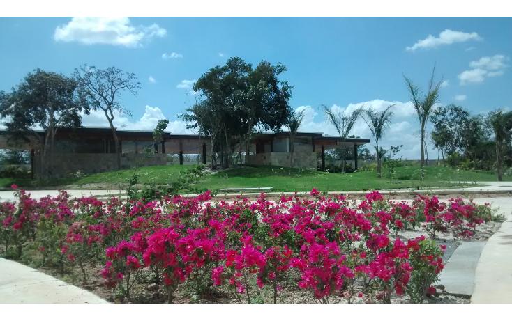 Foto de terreno habitacional en venta en  , cholul, mérida, yucatán, 1271257 No. 10