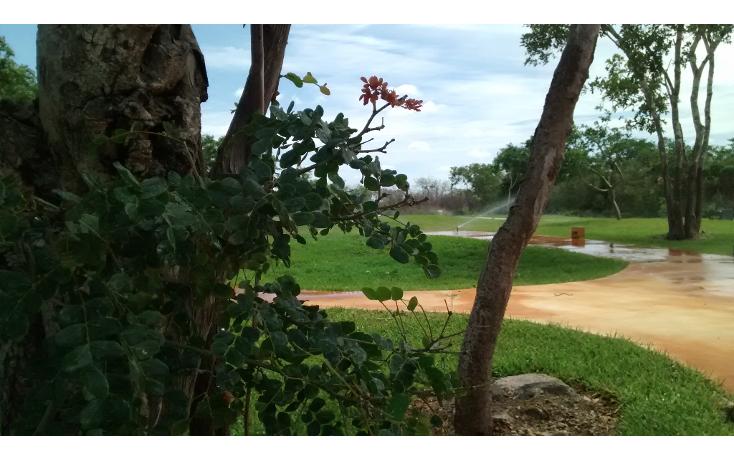 Foto de terreno habitacional en venta en  , cholul, mérida, yucatán, 1271257 No. 12