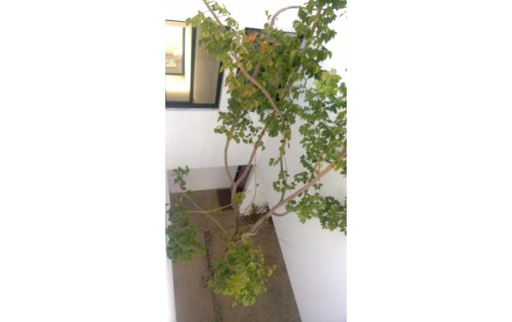 Foto de departamento en renta en  , cholul, m?rida, yucat?n, 1274987 No. 13