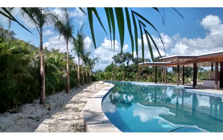 Foto de terreno habitacional en venta en  , cholul, mérida, yucatán, 1279019 No. 04