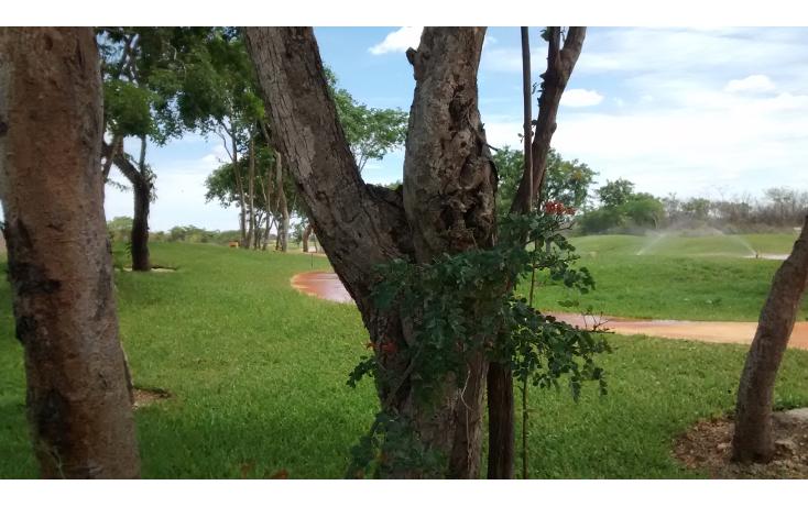 Foto de terreno habitacional en venta en  , cholul, mérida, yucatán, 1279019 No. 10
