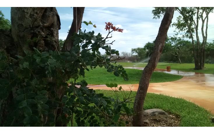 Foto de terreno habitacional en venta en  , cholul, mérida, yucatán, 1279019 No. 11