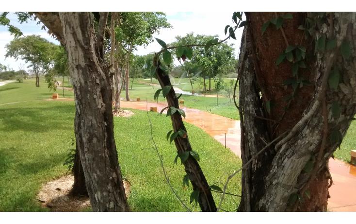 Foto de terreno habitacional en venta en  , cholul, mérida, yucatán, 1279019 No. 12