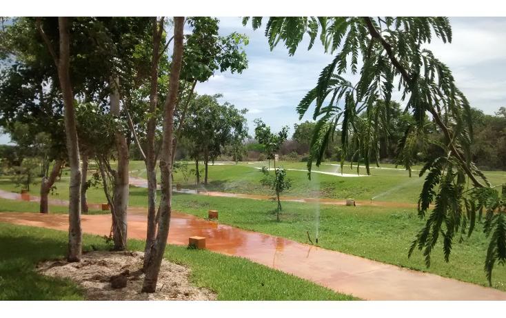 Foto de terreno habitacional en venta en  , cholul, mérida, yucatán, 1279019 No. 13