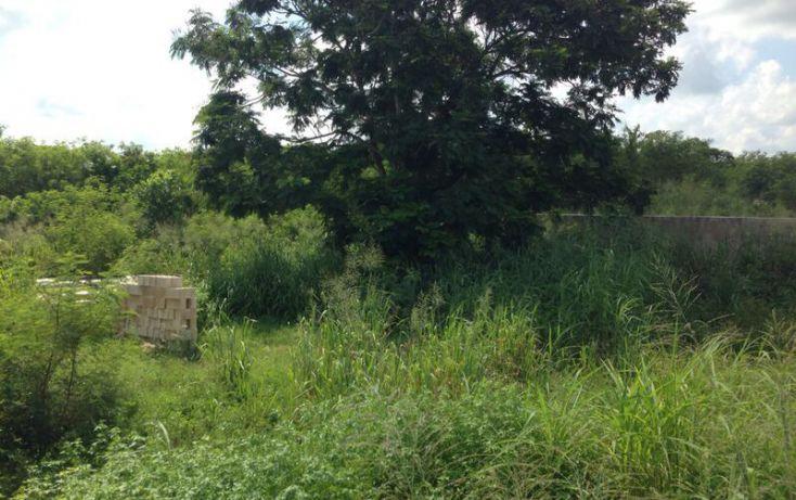 Foto de terreno habitacional en venta en, cholul, mérida, yucatán, 1303323 no 03