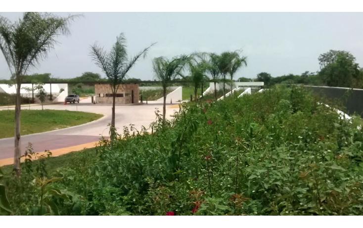 Foto de terreno habitacional en venta en  , cholul, m?rida, yucat?n, 1340101 No. 03