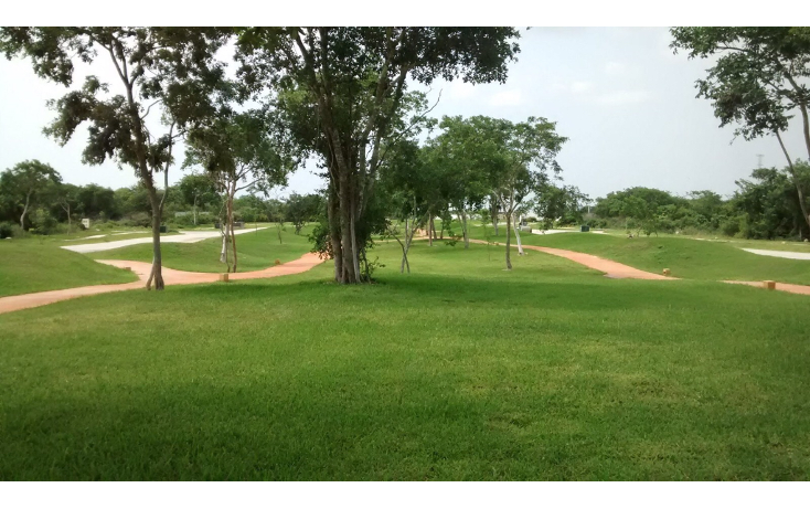 Foto de terreno habitacional en venta en  , cholul, m?rida, yucat?n, 1340101 No. 06