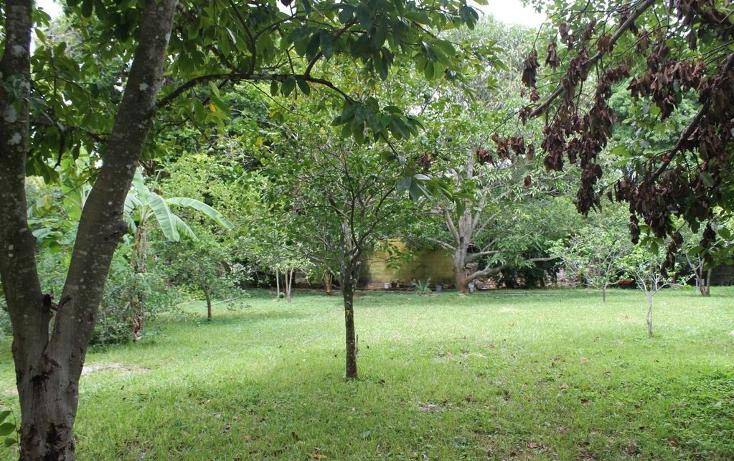 Foto de terreno habitacional en venta en  , cholul, mérida, yucatán, 1430965 No. 02