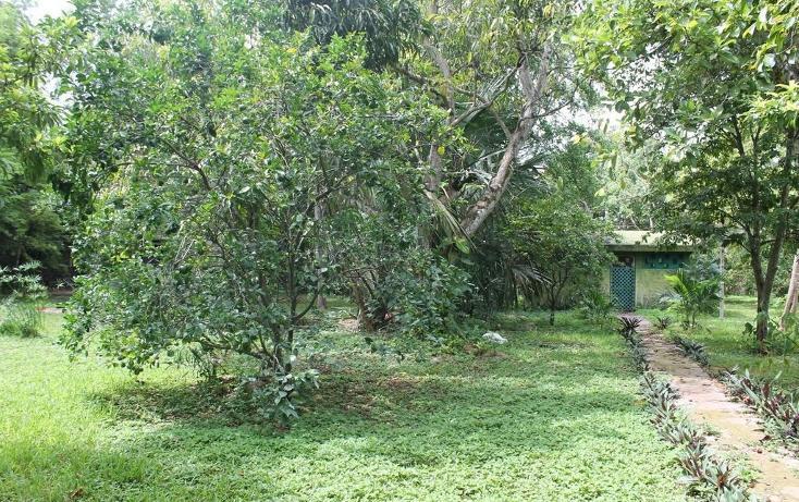 Foto de terreno habitacional en venta en  , cholul, mérida, yucatán, 1430965 No. 04