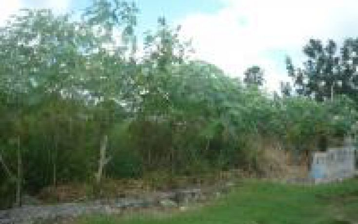 Foto de terreno habitacional en venta en, cholul, mérida, yucatán, 1443943 no 01