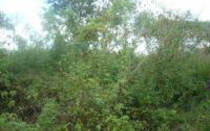 Foto de terreno habitacional en venta en, cholul, mérida, yucatán, 1443943 no 03