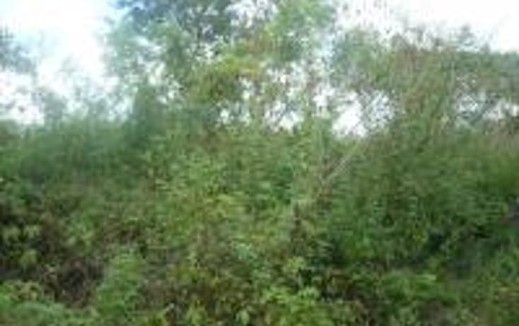 Foto de terreno habitacional en venta en  , cholul, mérida, yucatán, 1443943 No. 03