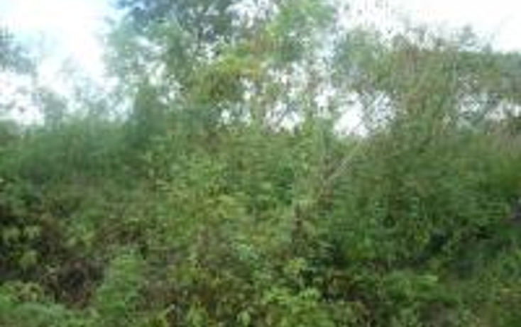 Foto de terreno habitacional en venta en  , cholul, mérida, yucatán, 1444103 No. 01