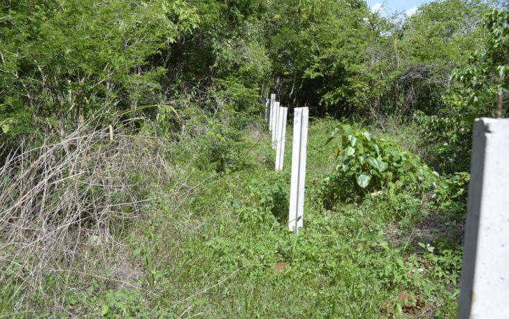 Foto de terreno habitacional en venta en, cholul, mérida, yucatán, 1459361 no 02
