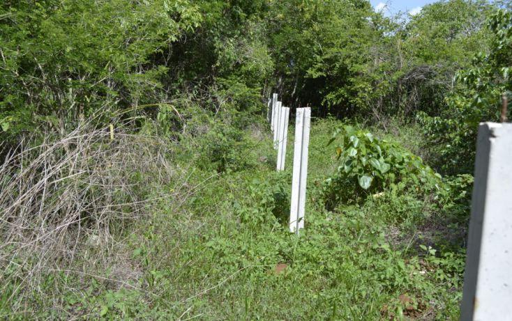Foto de terreno habitacional en venta en, cholul, mérida, yucatán, 1459361 no 03