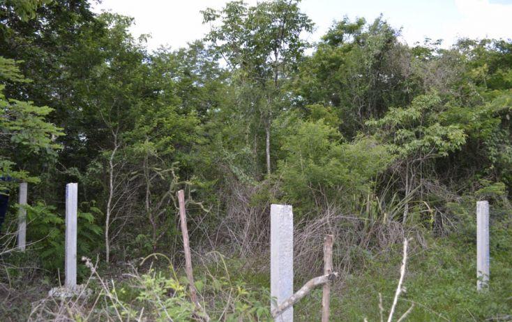 Foto de terreno habitacional en venta en, cholul, mérida, yucatán, 1459361 no 04
