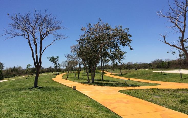 Foto de terreno habitacional en venta en  , cholul, mérida, yucatán, 1544663 No. 02