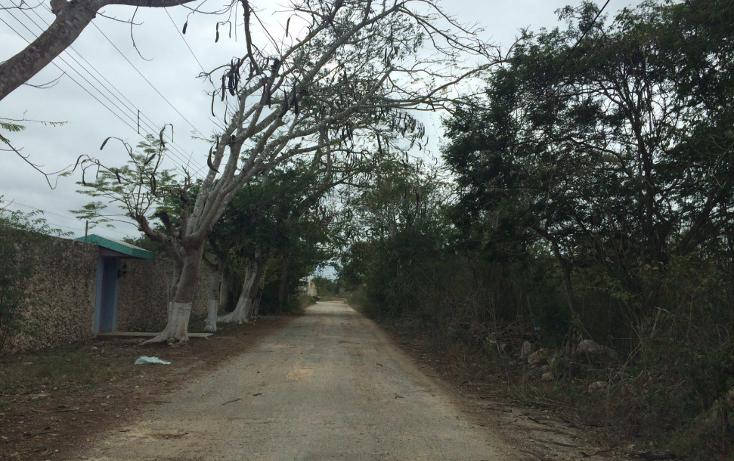 Foto de terreno habitacional en venta en  , cholul, mérida, yucatán, 1627096 No. 05