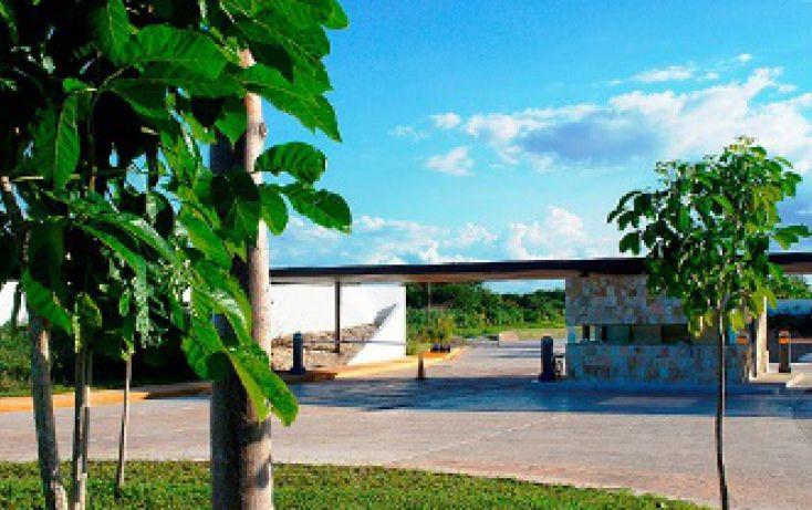 Foto de terreno habitacional en venta en, cholul, mérida, yucatán, 1788420 no 01