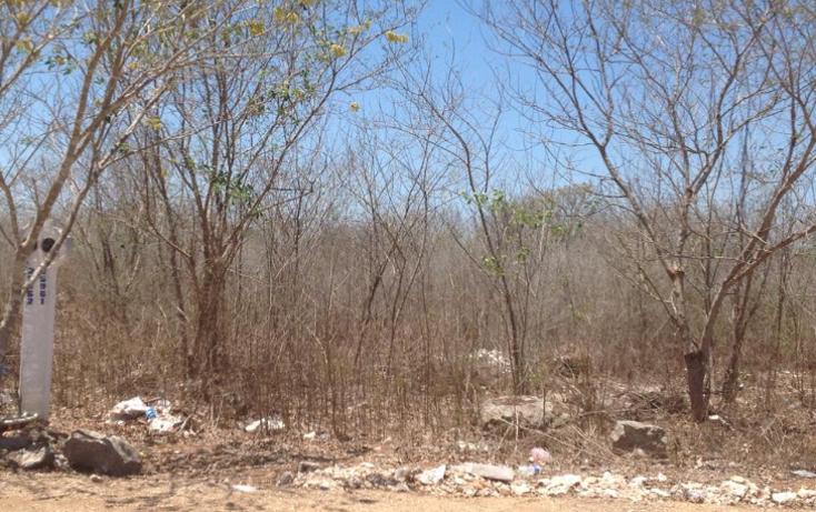Foto de terreno habitacional en venta en  , cholul, mérida, yucatán, 1828858 No. 04