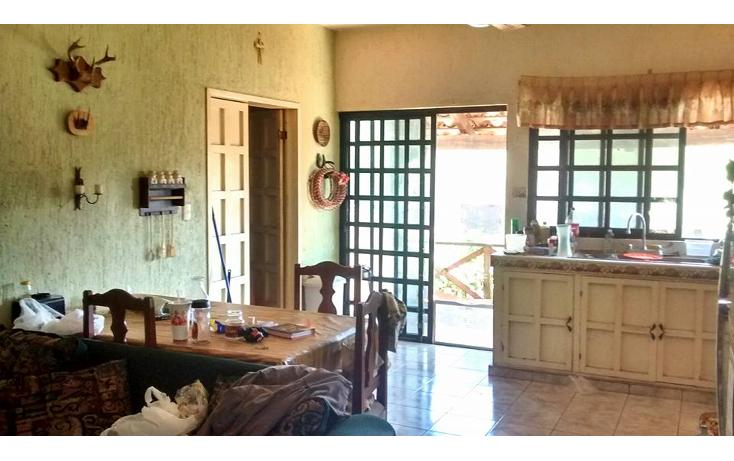Foto de terreno comercial en venta en  , cholul, mérida, yucatán, 1929598 No. 09