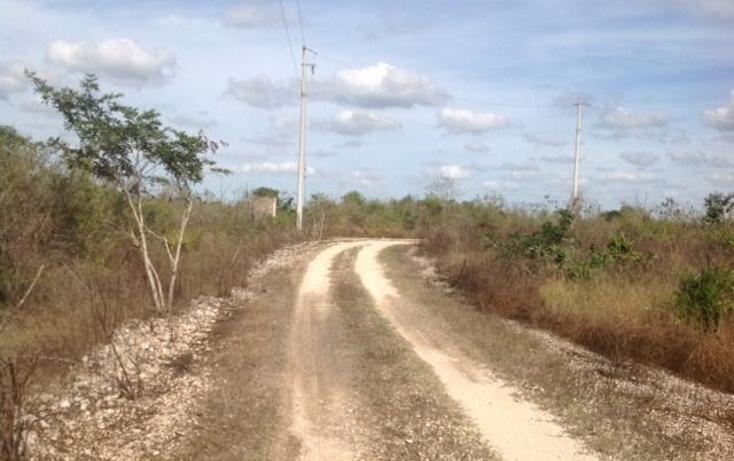 Foto de terreno habitacional en venta en  , cholul, mérida, yucatán, 2004374 No. 11