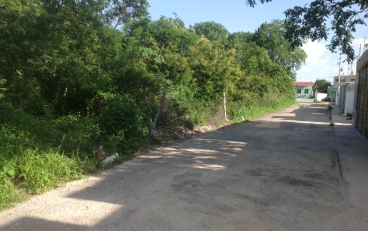 Foto de terreno habitacional en venta en  , cholul, mérida, yucatán, 2038690 No. 07