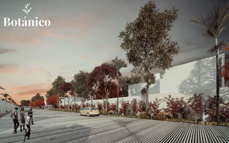 Foto de casa en venta en  , cholul, mérida, yucatán, 3688205 No. 18