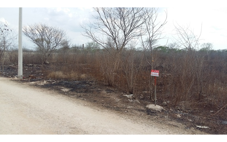 Foto de terreno habitacional en venta en  , cholul, mérida, yucatán, 630660 No. 07