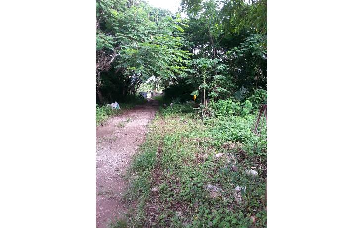 Foto de terreno habitacional en venta en  , cholul, mérida, yucatán, 943231 No. 01