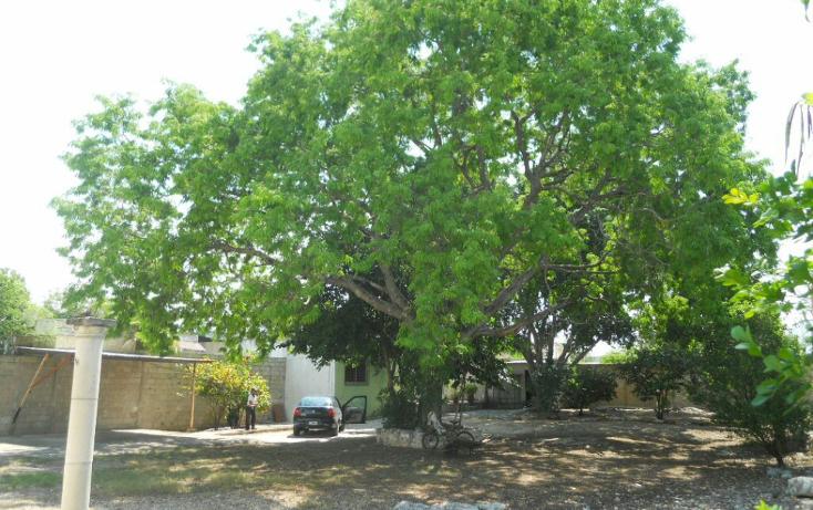 Foto de terreno habitacional en venta en  , chuburna de hidalgo, m?rida, yucat?n, 1063049 No. 05
