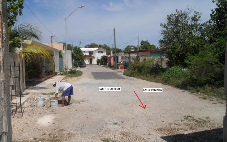 Foto de terreno habitacional en venta en  , chuburna de hidalgo, m?rida, yucat?n, 1063049 No. 06
