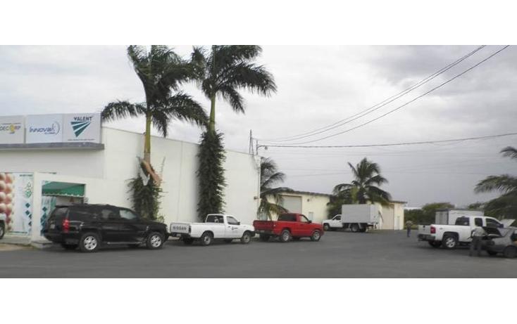 Foto de nave industrial en renta en  , chuburna de hidalgo, mérida, yucatán, 1197559 No. 03