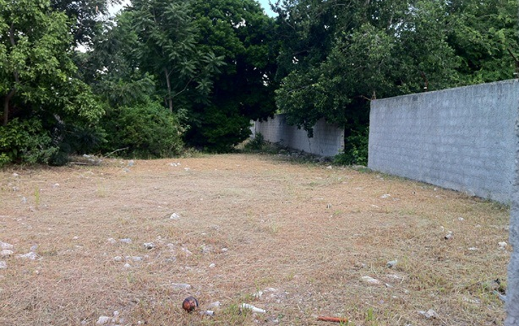 Foto de terreno comercial en venta en  , chuburna de hidalgo, m?rida, yucat?n, 1254941 No. 05