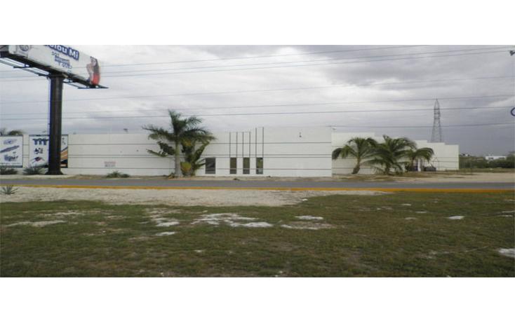 Foto de nave industrial en renta en  , chuburna de hidalgo, mérida, yucatán, 1271693 No. 04