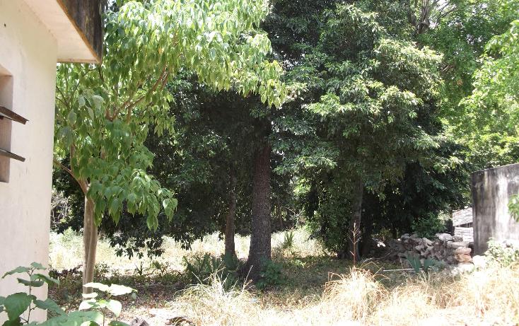 Foto de casa en venta en  , chuburna de hidalgo, m?rida, yucat?n, 1272817 No. 07