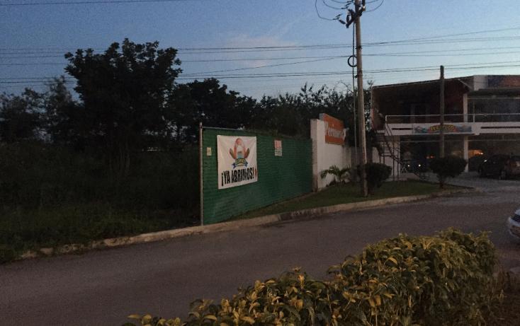 Foto de terreno comercial en renta en  , chuburna de hidalgo, mérida, yucatán, 1427811 No. 02