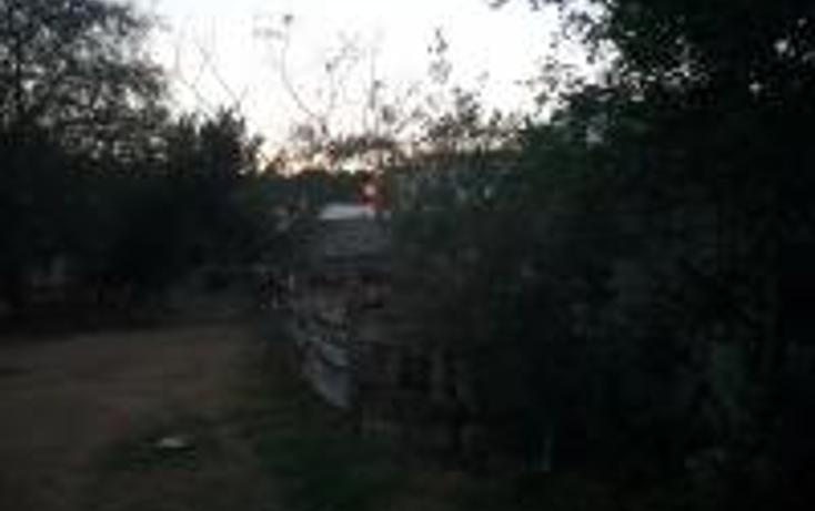 Foto de terreno habitacional en venta en  , chuburna de hidalgo, mérida, yucatán, 1443897 No. 02