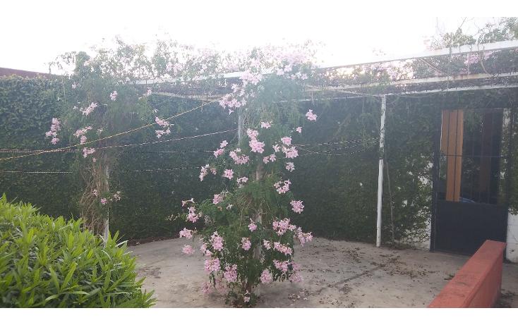 Foto de casa en venta en  , chuburna de hidalgo, m?rida, yucat?n, 1637698 No. 06
