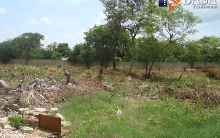 Foto de terreno habitacional en venta en, chuburna de hidalgo, mérida, yucatán, 1768114 no 05