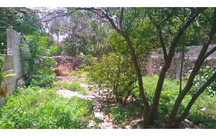 Foto de casa en venta en  , chuburna de hidalgo, mérida, yucatán, 1977896 No. 10