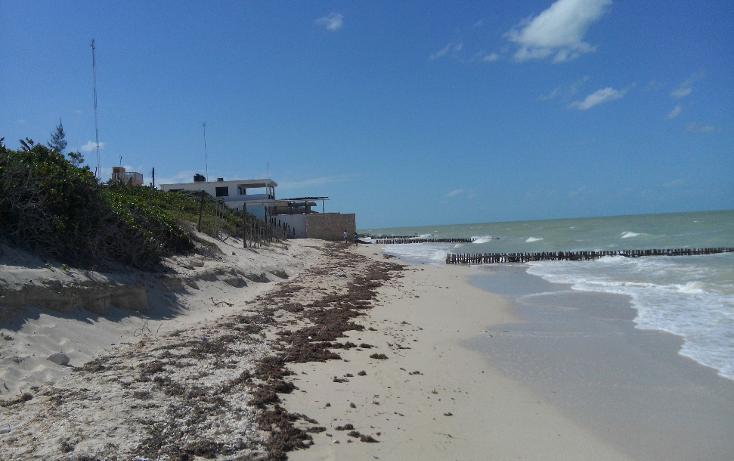 Foto de terreno habitacional en venta en  , chuburna puerto, progreso, yucatán, 1230817 No. 05