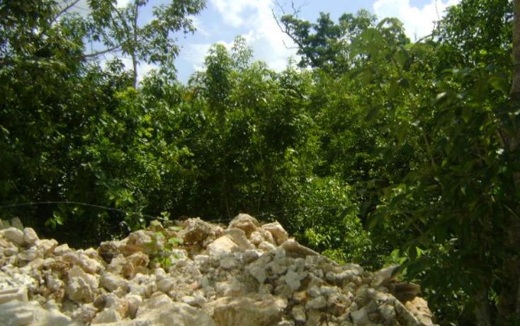 Foto de terreno comercial en venta en chucun nonumber, alfredo v bonfil, benito ju?rez, quintana roo, 1386385 No. 02