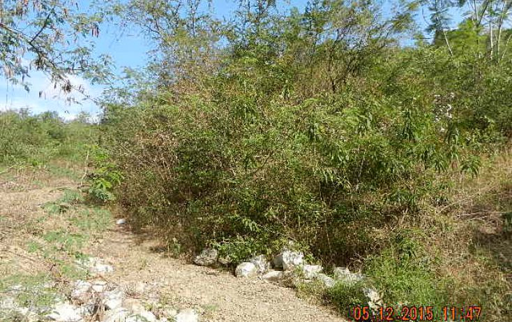 Foto de terreno habitacional en venta en, cieneguilla, santiago, nuevo león, 1463499 no 04