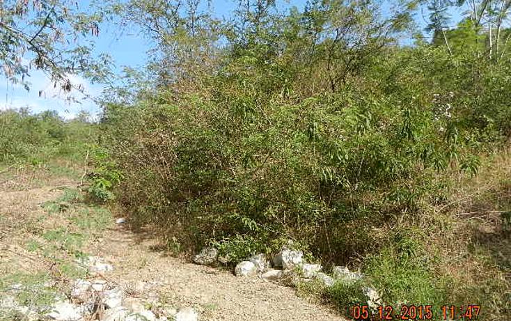 Foto de terreno habitacional en venta en  , cieneguilla, santiago, nuevo león, 2622595 No. 04
