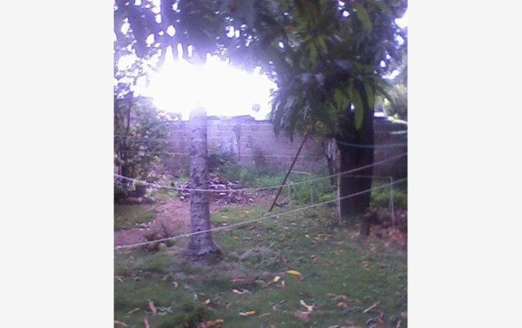 Foto de terreno habitacional en venta en  , cintalapa de figueroa centro, cintalapa, chiapas, 382149 No. 06