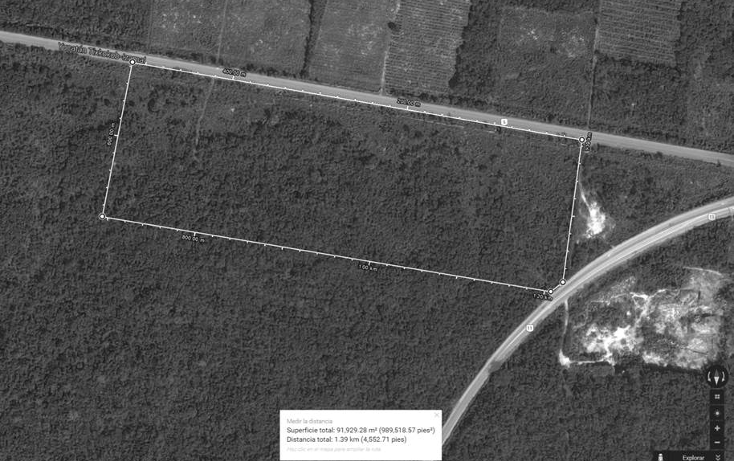 Foto de terreno habitacional en venta en  , citilcum, izamal, yucatán, 1781038 No. 03
